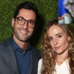 Tom Ellis and Meaghan has started Fundraiser to Rescue Wildlife from the Australian Bushfires